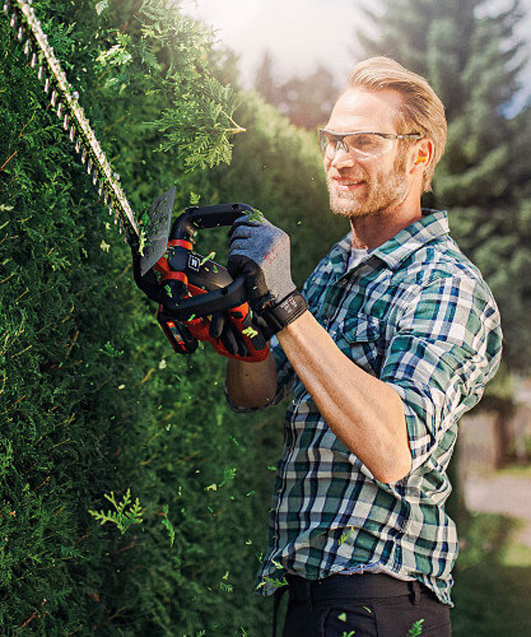A gardener cuts his hedge with a Einhell Power X-Change hedge trimmer.